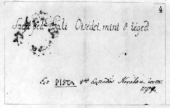 A legnagyobb magyar levelezése